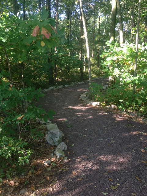 back entrance to silhouette trail