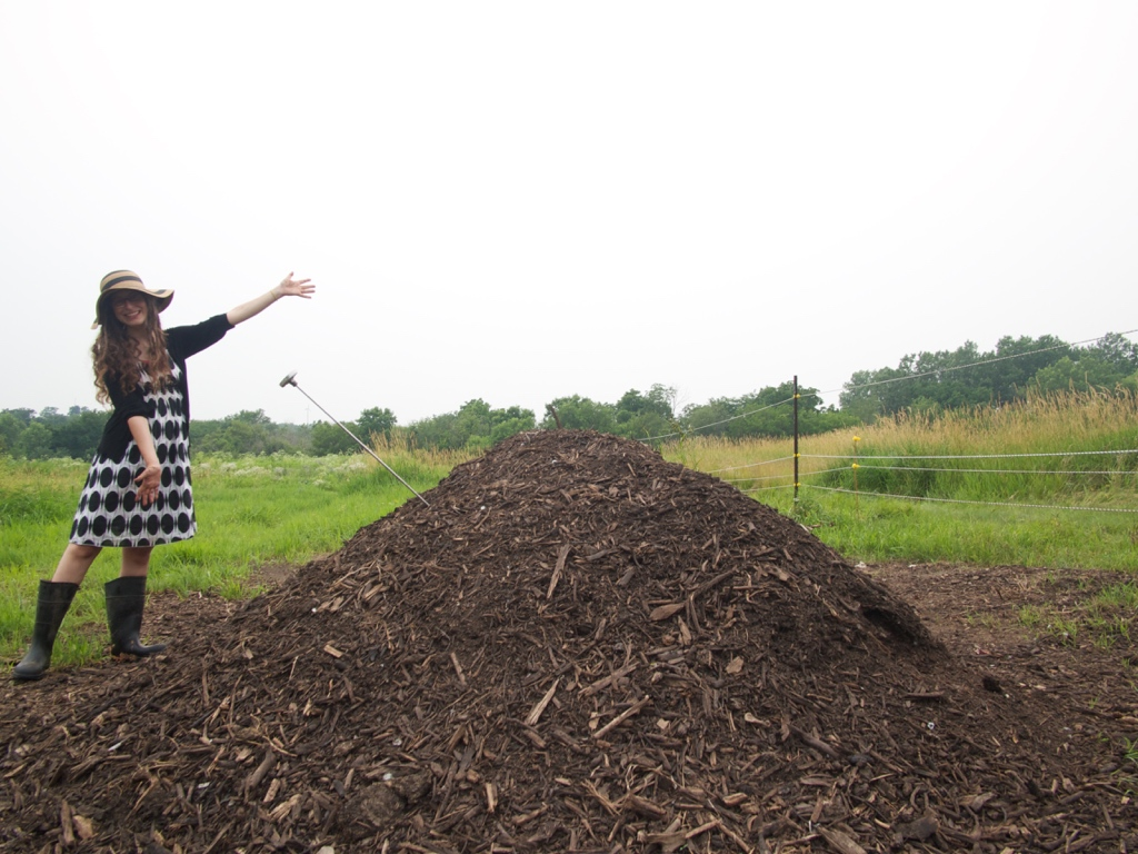 Adventures in Composting