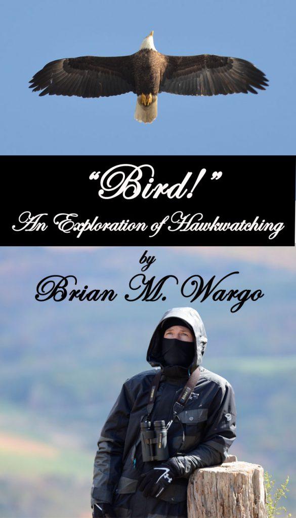 5)Brian Wargo